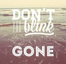 Don't Blink Or It's Gone Poster.jpg